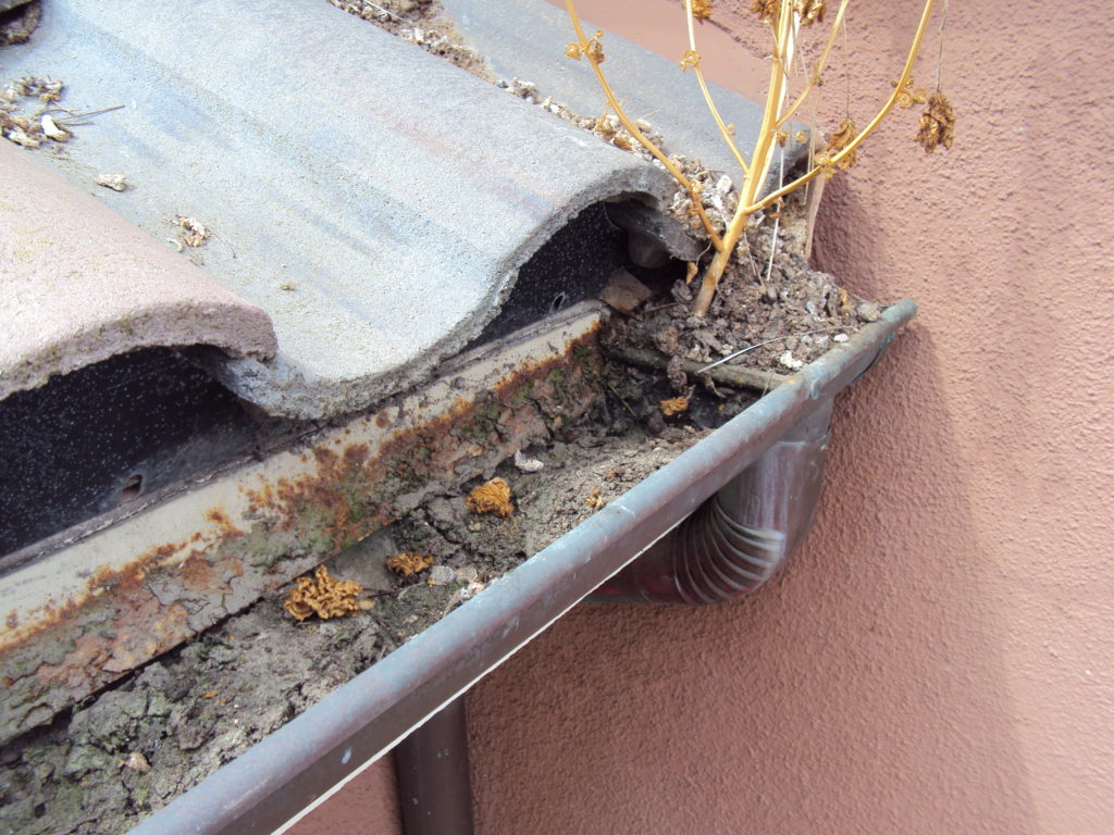 Huntington Beach Rain Gutter Cleaning and Downspout Cleaning