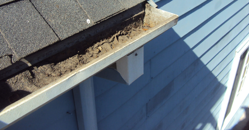 Prepare rain gutters and downspouts