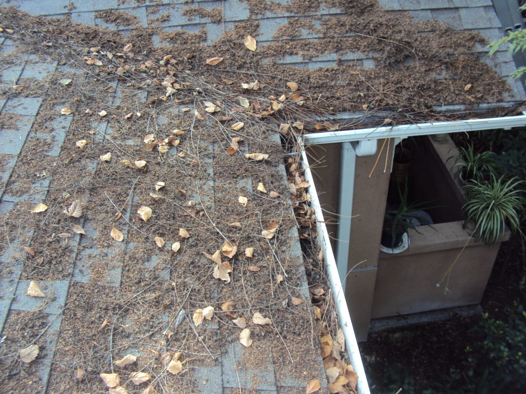 Rain Gutters Get Clogged