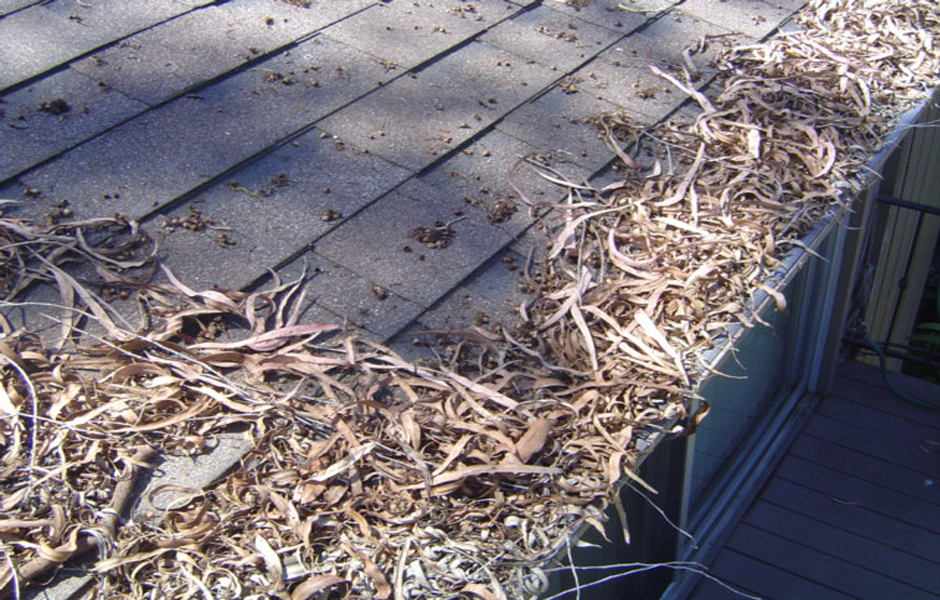 Contact Us Rain Gutter Cleaning